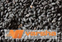 Exporters of Seeds /   Agro_Product_exporter , Agro_Product_manufacture   Agro_Products_wholesale_India Producer_and_exporter_of_Seeds http://varshaindustries.co.in/editable-oil.php