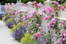 Clôture petit jardin de ville