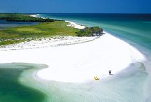 Florida my version