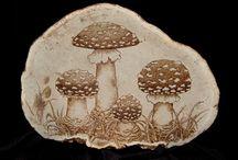 mushroom pyrograghy