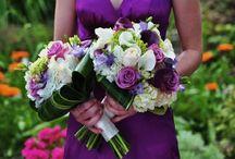 weddings  / by Melissa Lashbrook
