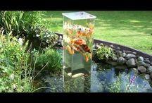 Aquarium v jazierku