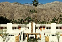 Palm Springs / by Charlotte McKid