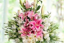 çiçek foto
