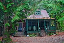 cabin in the woods / by Ash