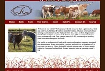 Hired Hand Powered Websites