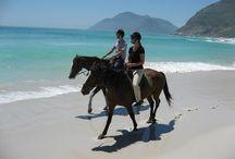 Horse-riding, Noordhoek