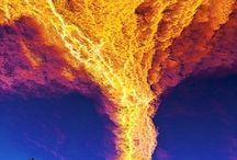 tornado e uragano di ory                                     yuravano di ory