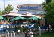 Blue Bonnet Restaurant / When a family owned restaurant has been in business for almost 40 years, they must be doing something right. Recently expanded with a beautiful patio, the Blue Bonnet has become an institution in Denver. If you can't go south of the border, at least head south of Alameda!