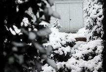 Winter Snow 2014 / NC Snow :} / by Jana Culbreth