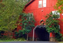 Entrance Barn-Whitestone Country Inn / Our Entrance Barn has 1 room & 3 suites.  With full kitchens, these suites are great for multiple nights stay!