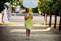 Here comes the bride signs / by Lisa Ozio