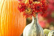 Fall / by Ashley (Redwine) Case