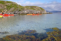 Kayaking trip in Helgeland with Moln Oy