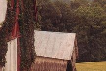 Old Barns/structures / by Jerry Prestidge