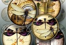 Dragonfly/fairy