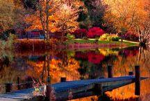 pintar el otoño