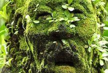 Art of Nature - Műalkotások a természetben / Sights in the Nature – Látványosságok a természetben