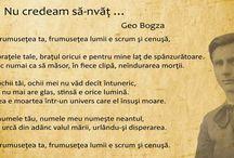 Geo Bogza