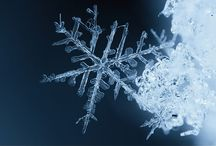 SNOWFLAKES / by Judy Bowers Goffin