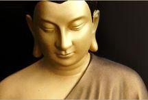 Buddha / by Amy Gibson