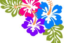 Applikationen Tropen Blüten