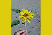photos artistic bye Anuk