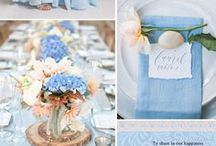 Wedding in blue