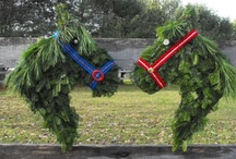 Horses and fences at Christmas time / Beautiful pictures of horse and fences during the holiday season.