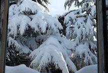La nevicata del '14/'15