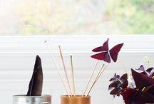 Designs I like / Møbler, klær, web...