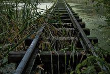 Tracks / by Dusky Loebel