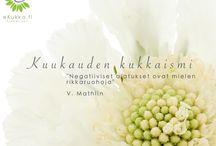 Kuukauden kukkaismit - eKukka.fi / Kukkaismit ovat eKukka.fi sivustolla kuukausittain ilmestyviä aforismejä