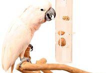 PVC/Acrylic bird toys