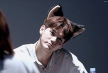 """`Ong Seongwu~옹성우 /  """"Ong Seong Wu(옹성우)"""" is a South Korean singer underFantagio and YMC Entertainment. In 2017 he survived Mnet's """"Produce 101 Season 2"""" and qualified to be amember of boy groupWanna Onefor one year.  Details Active Since: 2017 Birth Name:Ong Seong Wu/Ong Seong Woo (옹성우) Born:August 25, 1995 Height:179cm Weight:63kg Label:Fantagio"""