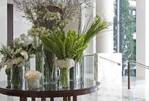 plants lobby