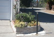 Planters and Pots in Marin / Marin Planters and Pots