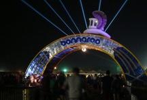 Music Festivals / by Lindsey Horner
