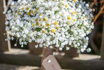 Bukiet ślubny gipsówka / Bridal bouquet gypsophila / Bukiet ślubny gipsówka w roli głównej
