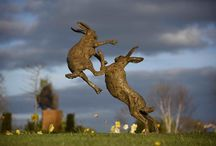 Hares - sculpture / Photographs of the hare sculptures I have made over the years.  All bronze, all signed, dated and limited editions
