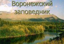 Воронежский заповедник,природа Воронежского края