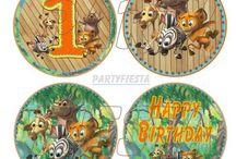 Madagascar Baby Birthday Party