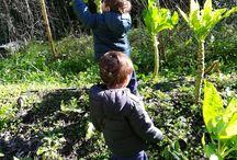 Aprender a Natureza