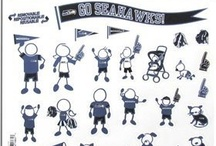 Seahawks  Auto Accessories / Seahaks are the boss of the road !!! / by Seahawks Mania