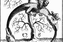 Scienza e Simbolismo Sacro