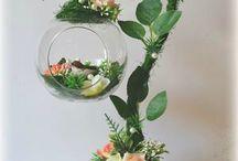 flower 2 / virágcsodák