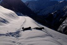 Three Valleys, France / Skiing in the incredible Three Valleys, the largest ski area in the world...