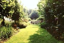Fran Sorin Bryn Mawr, Pa. garden / Bryn Mawr garden in suburb of Philadelphia where I gardened for 25 years. I took an aberrant, steeply sloping 1/2 acre with NO landscaping and transformed it into my own personal paradise.