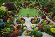 garden ideas / Because green is good. / by Cheri Barner LaTorre