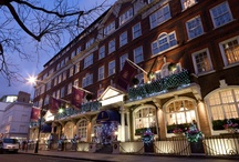 Christmas at The Goring
